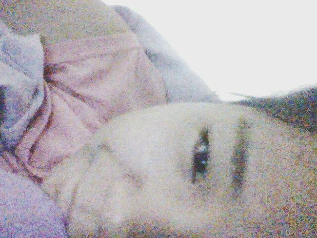 晚安 莫西西米- 晚安。