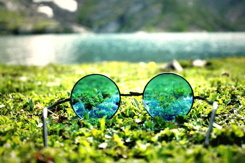 Grass No People Day Outdoors Green Color Nature Lake Close-up Water gl Glasses Reflect Beauty In Nature Glasses ❤❤❤❤❤❤❤❤❤ Rishabhchauhan The Week On EyeEm Mix Yourself A Good Time Perspectives On Nature