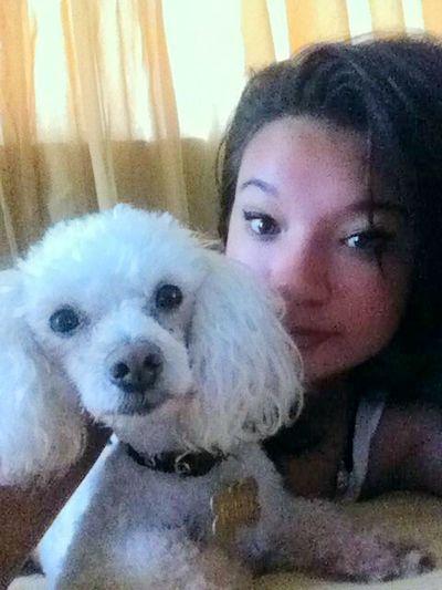 My little friend :3 Dog Fanatics Cheese! My Little Puppy