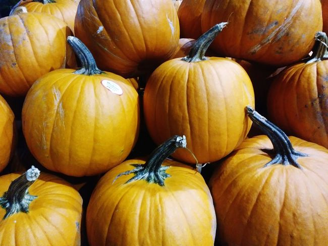 Pumpkin Food And Drink No People Food Vegetable Market Freshness Healthy Eating Autumn Squash - Vegetable Day Close-up Indoors  Halloween The Week On EyeEm