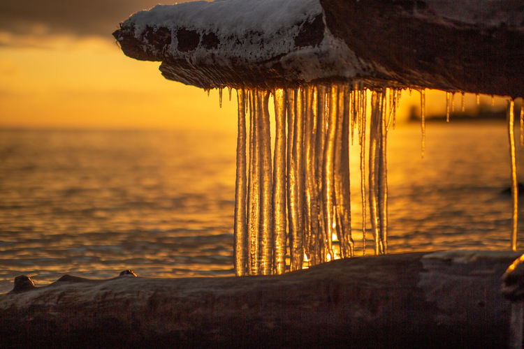 Close-up of icicles on beach against sky during sunset