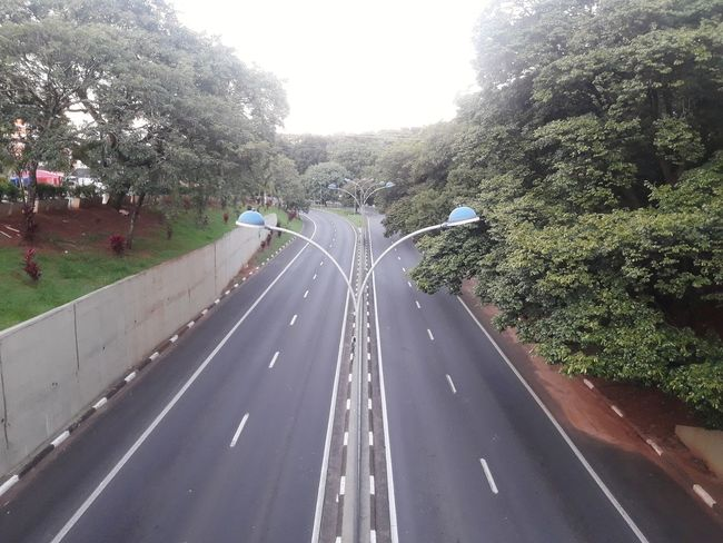 avenida Aquidabã em Campinas SP Edinaldomaciel Campinas Campinasp Campinas, São Paulo, Brasil Campinassp Bosque Tree Road City Sky Diminishing Perspective Double Yellow Line vanishing point Car Point Of View Passageway Windshield Wiper Empty Road Windshield Crash Barrier Country Road The Way Forward Railroad Track Road Marking Dividing Line Growing Countryside Treelined Pathway White Line Asphalt Go Higher