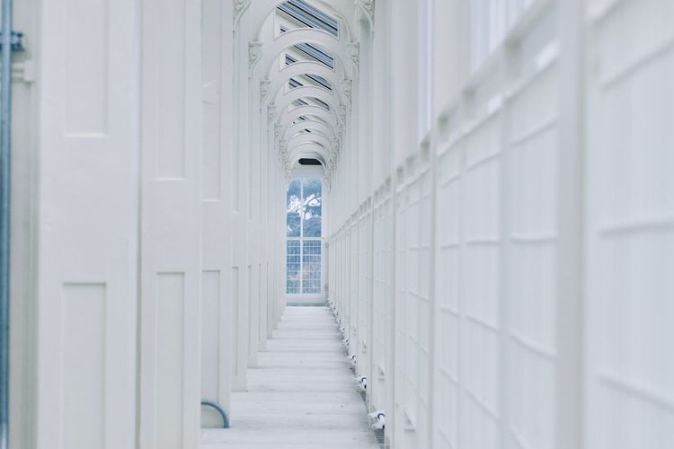White Architecture Building Building Interior Copy Space Kew Gardens Royal Botanic Gardens vanishing point Architectural Column Architectural Feature London In A Row A New Perspective On Life My Best Photo