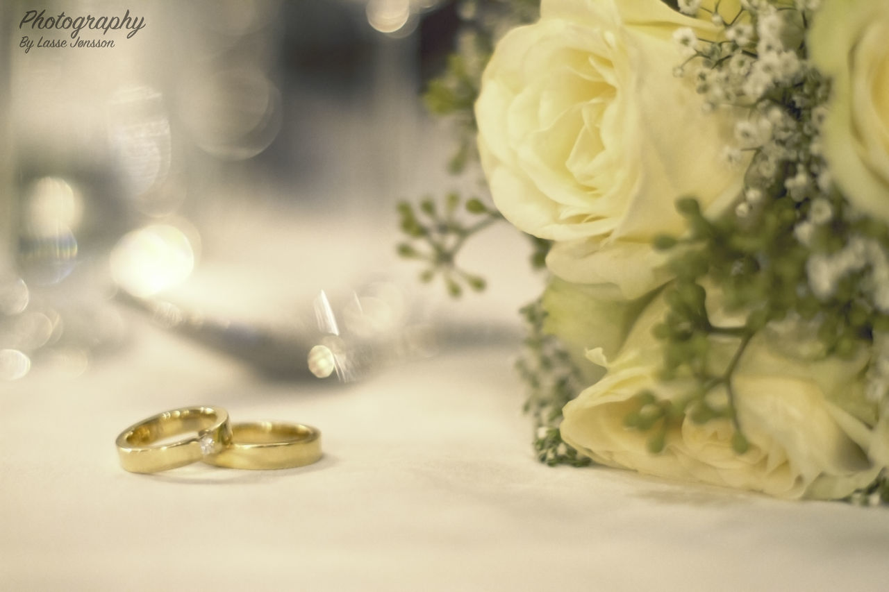 flower, flowering plant, plant, selective focus, freshness, beauty in nature, close-up, indoors, no people, rose - flower, jewelry, celebration, nature, table, rose, wedding, vulnerability, still life, white color, flower head, temptation, pearl jewelry, flower arrangement, bouquet