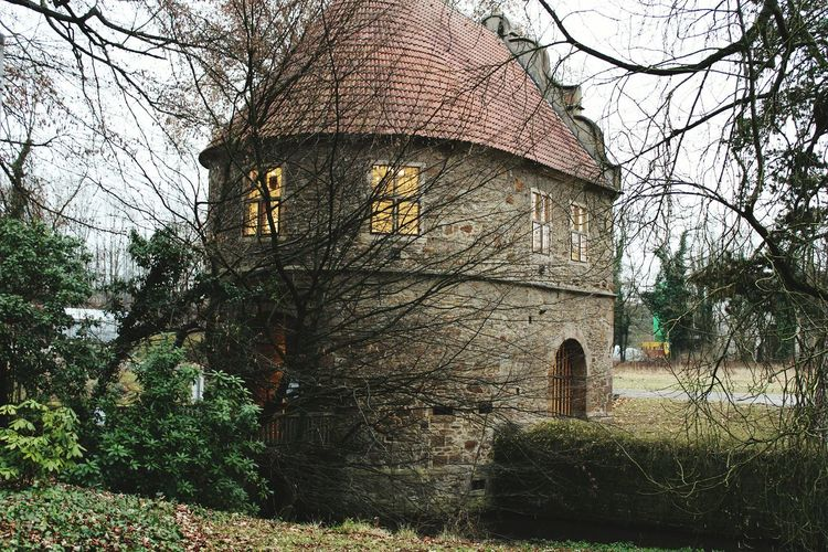 Architecture Nature Scene Old Torhaus🏚 Park Rombergpark Dortmund Cold Atmospheric Photography EyeEm Weekend Weathered My Year My View