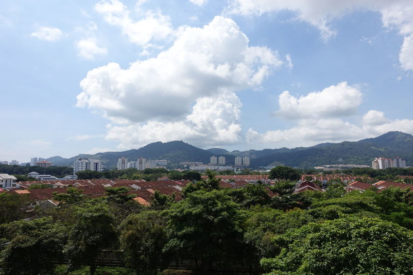 Residential Area in Penang City Cloud - Sky Hillside Housing Estate Landscape Trees