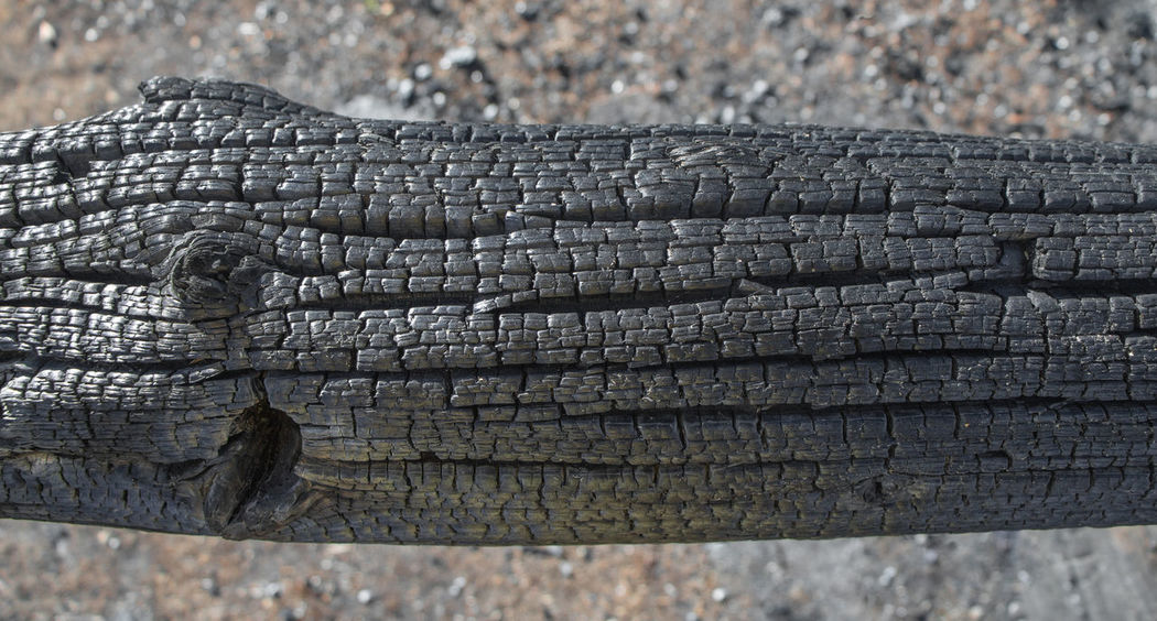 Burnt Wood Textures Burnt Close-up Day Fire Fire Aftermath No People Outdoors Patterns Textured  Timber Timber Framing Wood Pole Wood Post
