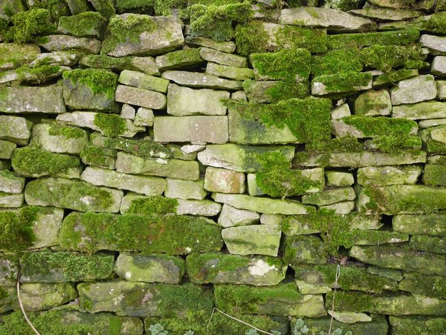Abundance Change Day Deterioration Full Frame Geometry Leading Moss Mossy No People Outdoors Peak District  PeakDistrict Pebble Rock Rock - Object Rough Stack Stone Stone - Object Stone Wall Textured  Wall