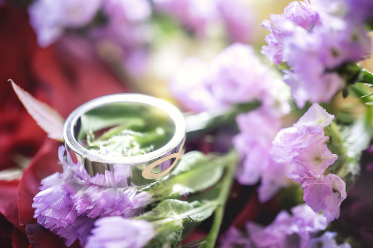 #35mm #Ayceds_Pixels #Infinite #SonyA6300 #flowers #love #macro #proposal #ring Close-up