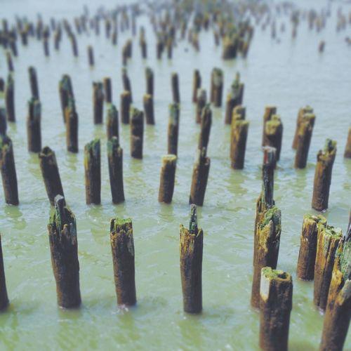 Docks Ruins Chelseapier