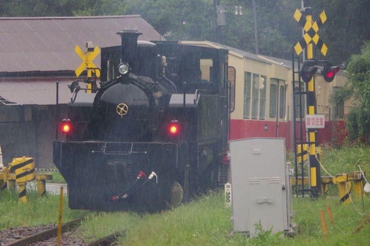 Pentax K-3 飯給駅 雨 トロッコ列車 小湊鉄道