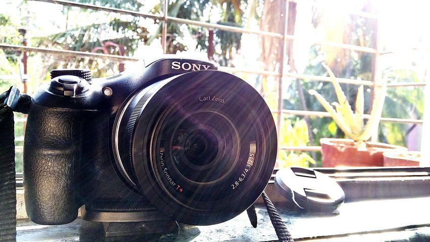Myfirstcamera SonyHX400V Shotonphone Carlzeisslenses PhonePhotography Backlighting Close-up Sunrays Lensflare