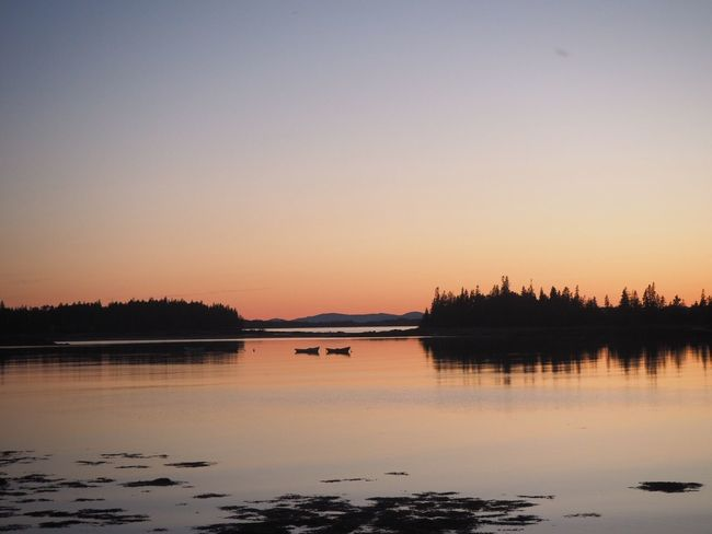 Deer Isle Sunset, Maine Maine Deer Isle Water Sky Sunset Beauty In Nature Scenics - Nature Tranquility Tree Nature Reflection Tranquil Scene No People Orange Color Clear Sky