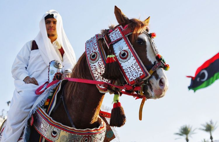Libyan horse rider Horse Horse Life Libyanhorse Horseeye Horsehead Horselovers Horse Love Horseshow HorseNAround Horselove Horse Photography  Horse <3 Horses Horsepower Horseman Libyan Culture Libyan Style Libyan _tripoli Libyan Traditions