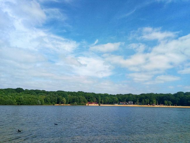 Lake Side View Ruislip Lido Clear Water Beach Blue Sky And Clouds Trees And Nature Ducks At The Lake Nature Photography Nature_collection Mobilephotography Tree Blue Lake Sky Cloud - Sky Landscape