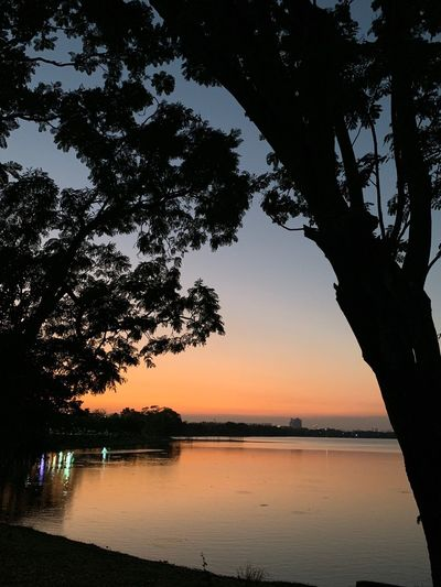 Lake at evening