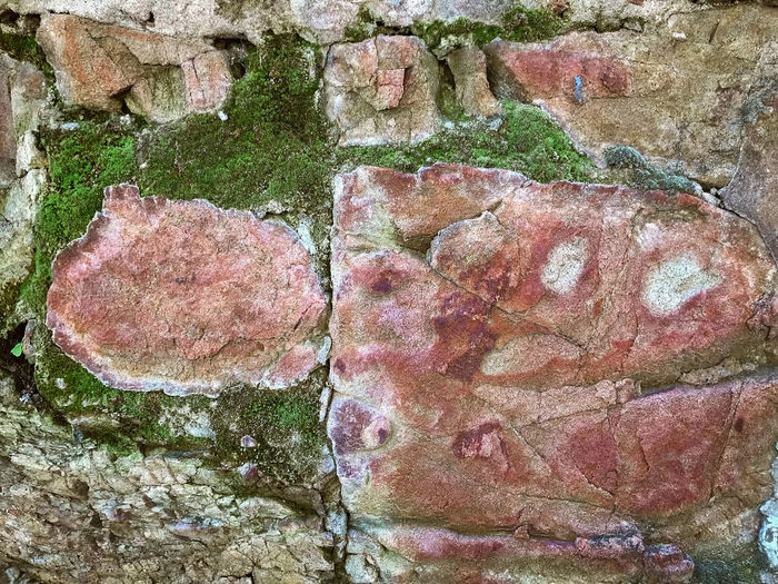 Close-up of rock on wall