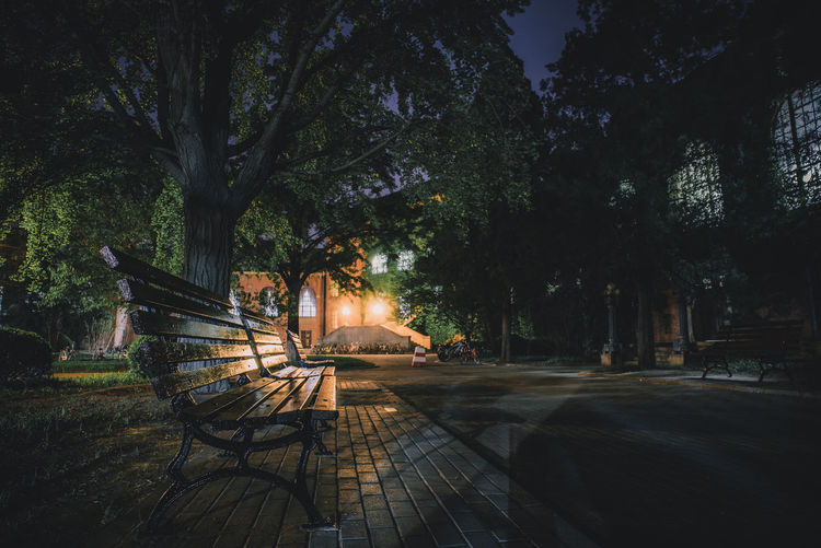 Empty bench by trees at night