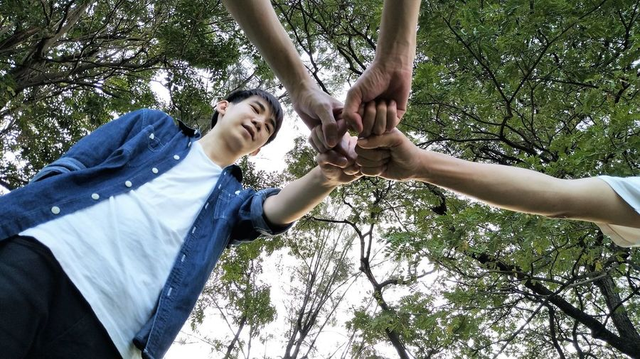 Low angle view of friends giving fist-bump against trees at park