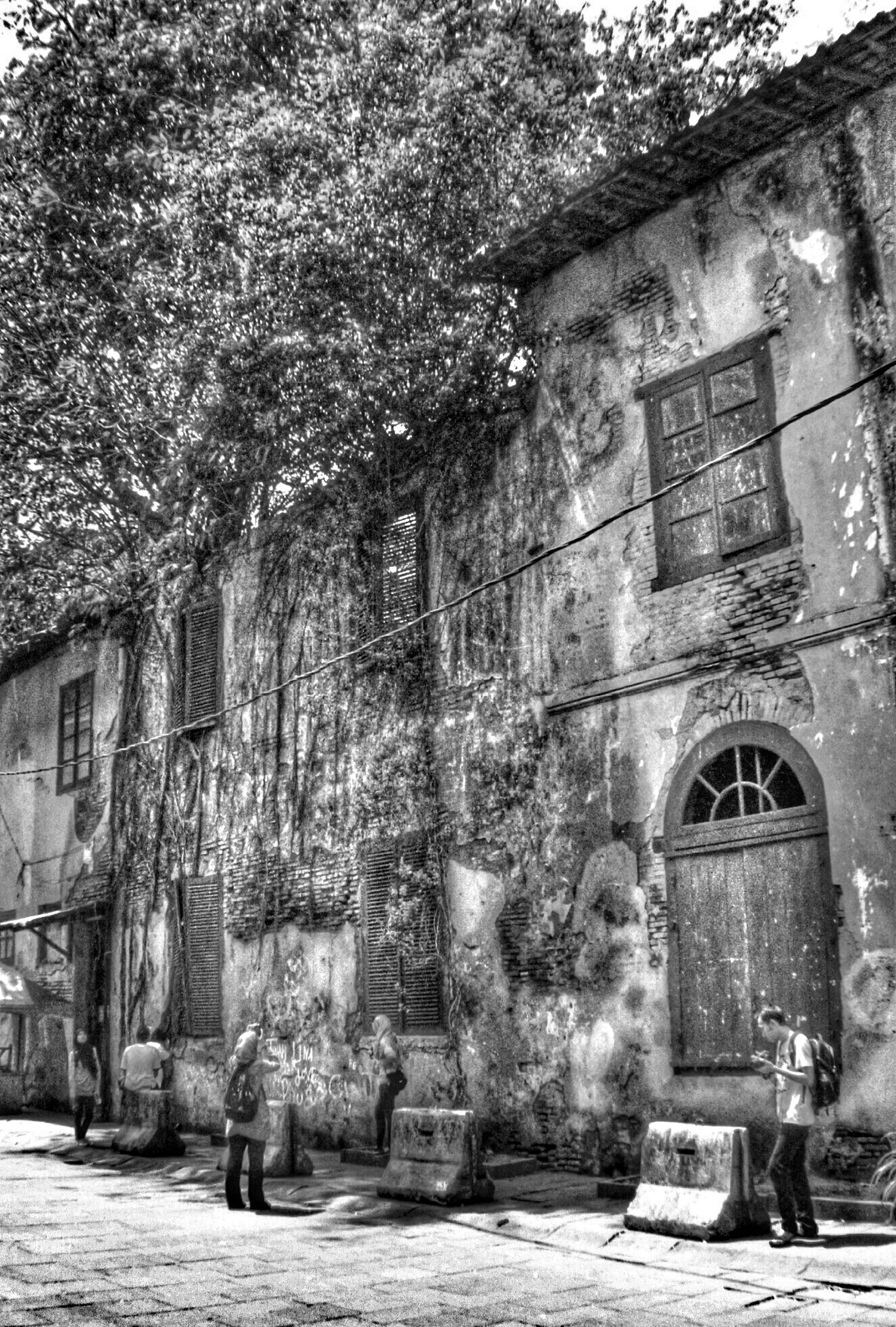 architecture, building exterior, built structure, old, entrance, wall - building feature, arch, abandoned, stone wall, outdoors, street, tree, day, house, building, door, history, brick wall, weathered, graffiti