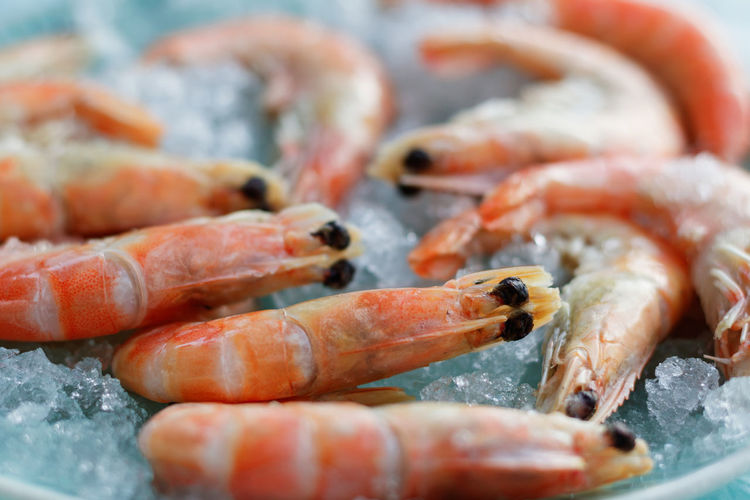 Close-up of prawns on ice for sale at fish market