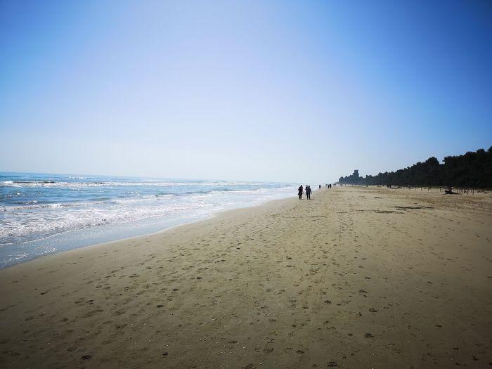 Cerrano Tower Water Clear Sky Sea Beach Blue Sand Wave Seascape Coast Horizon Over Water Coastline Sandy Beach