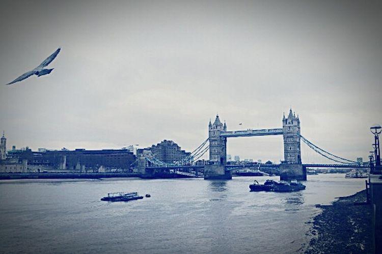 Londonlife London Londonbridge Popular Photos Photooftheday #picoftheday #style #model #pictureoftheday #street #sunglasses #colorful #instafashion #streetphotography #inspiration #clothes #photoshoot #streetstyle #styleblogger #fashionblogger #photographerlife #blogphotography #blogphotographer #tre Traveling Arkitektur