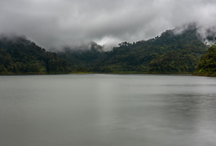 Low clouds ride over the tops of the tree covered hills at a large lake setting. Beauty In Nature Calm Cloud - Sky Day Fog Foggy Foggy Morning Forest Hillside Jungle Lake Low Clouds Mist Nature No People Outdoors Scenics Sky Still Storm Cloud Tranquil Scene Tranquility Tree Tree Top Water