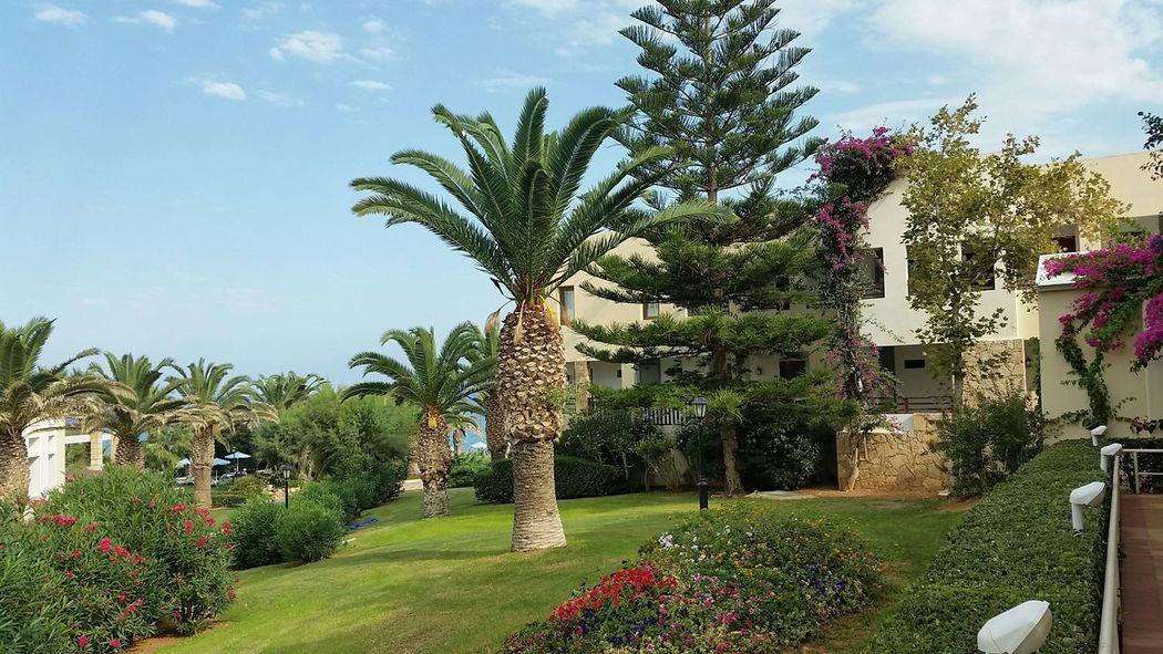 Hotel Crete Royal Hotel Creta Royal Greece Crete Skaleta Skaleta Crete
