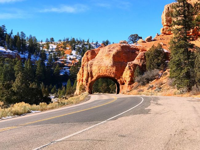 Road to Bryce Canyon Nature Road Beauty In Nature Scenics Sunlight Day Sky Tranquility Outdoors No People Winding Road Bryce Canyon Nature Winter National Park TBT  USAtrip