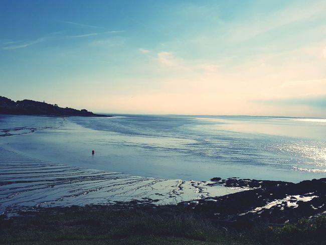 Water Sea Wave Sunset Beach Sand Swimming Low Tide Blue Horizon