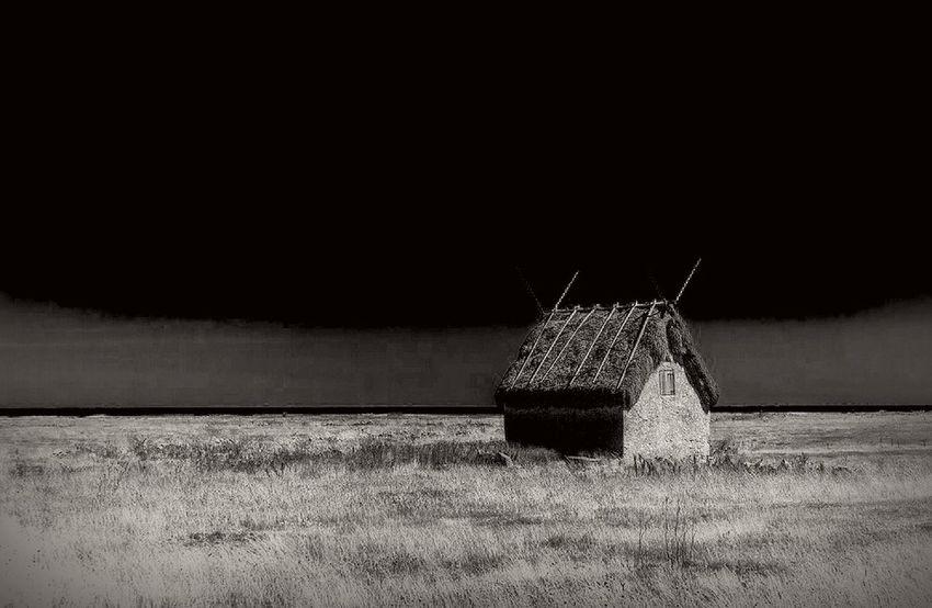 Standing alone... Monochrome Blackandwhite B & W  Alone Nature Landscape_photography