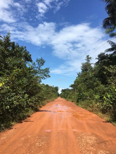Dirt road amidst trees against sky