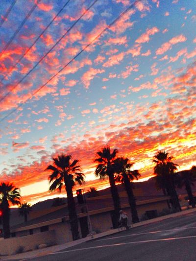 The Sunsets in the Desert are so amazing. No Filter needed. Beautiful Surroundings