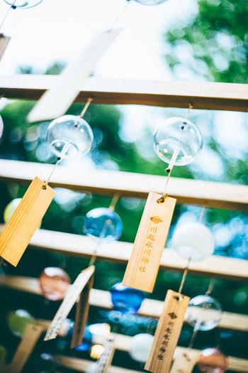 川越氷川神社 Cool Japan Focus On Foreground Furin Japan Japanese Culture Japanese Temple No People Nostalgic Scene Summer In Japan Wind Chimes 風 風鈴