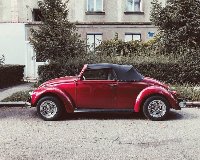 Modern beetle 🚘... Fast Restauration Road Parked Lifestyle Retro Car Hood Windshield Retro Automotive Automobile Auto ShotOnIphone Beetle Car Car Motor Vehicle Mode Of Transportation Transportation Land Vehicle Architecture Building Exterior Retro Styled Vintage Car Stationary Building Red Built Structure City Street Old