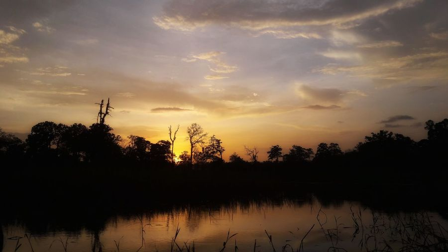 Sunset Indonesian Papua Merauke Namek Meraukehits Tree Water Sunset Lake Silhouette Reflection Sky Landscape Cloud - Sky Swamp Tree Area Wetland Reflection Lake First Eyeem Photo
