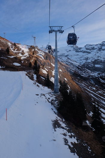 Mount Titlis Alpen Alps Cold Temperature Day Mount Titlis Mount Titlis, Switzerland. Mountain Range Mountain View Nature Outdoors Overhead Cable Car Ski Lift Sky Snow Snow Covered Snow ❄ Snowcapped Mountain Snowing Switzerland Switzerland Alps Titlis Titlis,Switzerland Tree Water Winter