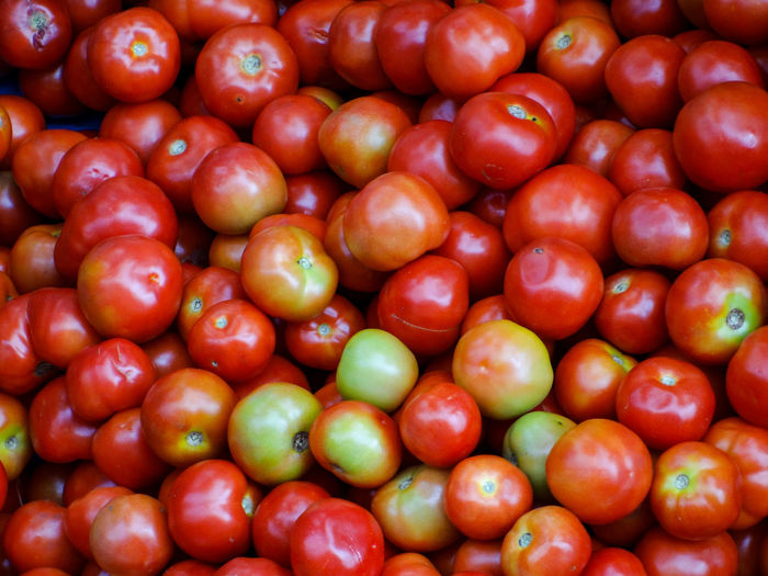 TOMATOES Tomatoes🍅🍅 Fruit Red Backgrounds Full Frame Healthy Lifestyle Close-up Food And Drink Vitamin Juicy Low Carb Diet Nutritional Supplement Vegan Vitamin C Ripe Antioxidant