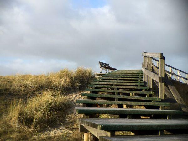 Amrum Bench Stairways Stairway To Heaven Dunes Showcase: December