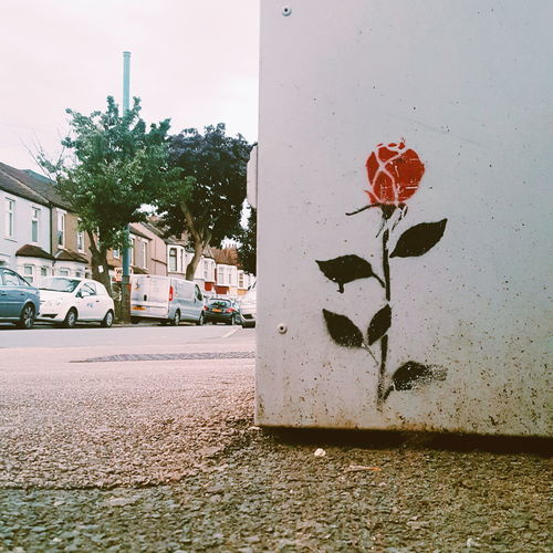 Urbanexploration Urban Nature Built Structure Graffiti Day Tree Red Outdoors No People Road Sign Building Exterior Architecture Sky Close-up Flower Rose♥ LONDON❤ Togetherness Friendship Love♥ Flowers Out Of The Box Place Of Heart EyeEmNewHere