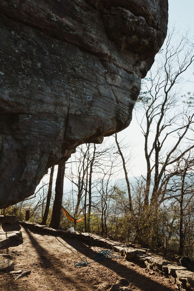 Climb Hiking Rock VSCO A Bare Tree Beauty In Nature Climbing Close-up Day Hammock Landscape Nature No People Outdoors Physical Geography Rock - Object Rock Formation Rocks Scenics Sky Summer Tranquility Tree Vscocam