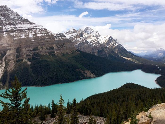 Peyto Lake Lake Lake View Mountains Mountain View Sky And Clouds Landscape Banff  Canadian Rockies  Canada Animal Shapes Animal Shaped Lake Original Experiences Finding New Frontiers The Great Outdoors - 2017 EyeEm Awards Perspectives On Nature The Great Outdoors - 2018 EyeEm Awards The Traveler - 2018 EyeEm Awards