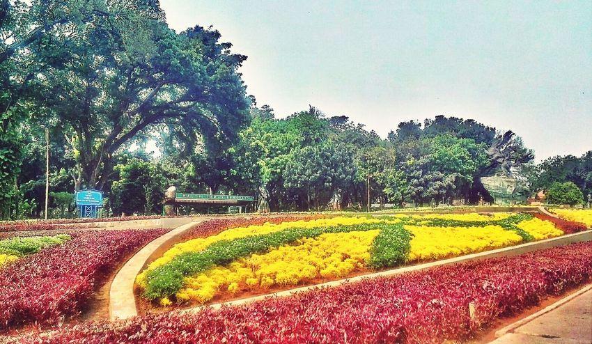 taman yang paling indah... Jakartaselamanya Jakarta Park