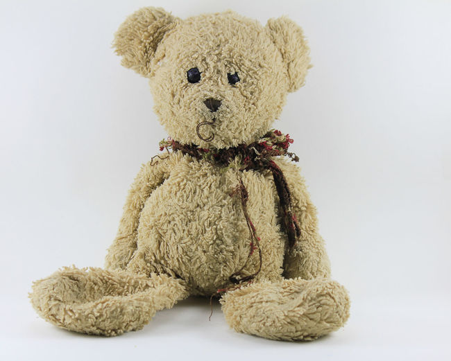 Teddy bear on a white background. Teddy Bear On A White Background. Childhood Close-up Cut Out Cute Day Doll Healthcare And Medicine Indoors  No People Sitting Studio Shot Stuffed Stuffed Toy Teddy Bear Toy White Background