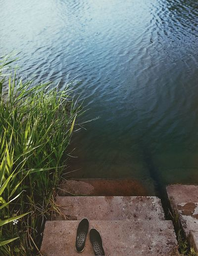 Lake Stairs Nature Low Section Water Beach High Angle View Rippled Close-up Calm