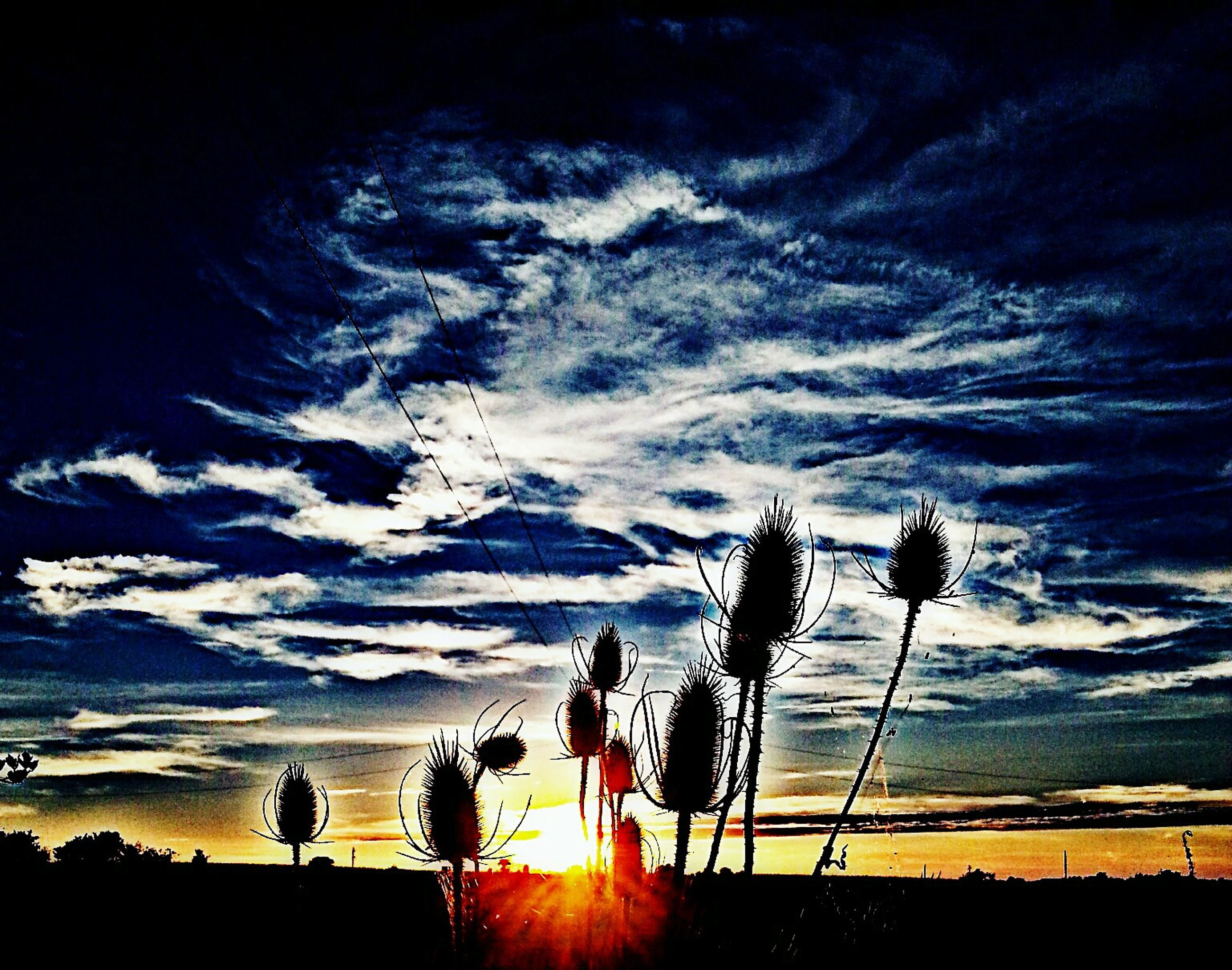 sunset, silhouette, sky, beauty in nature, scenics, tranquil scene, tranquility, cloud - sky, sun, nature, electricity pylon, power line, landscape, idyllic, sunlight, orange color, cloud, tree, low angle view, outdoors