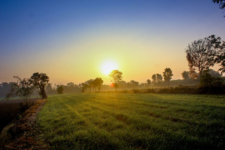 Sunrise Village Life Rural Scene No People Pleasing_view Farm Fields And Sky Nature Sunray Of Light Beauty Earlymorning