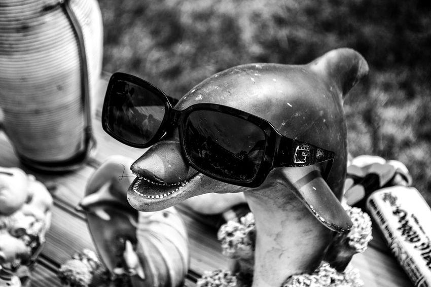 Nikon D3100 / AF-S NIKKOR 18-55 mm Animal Themes Biblo Biblos Blackandwhite Dauphin Dolphin Lunette De Soleil Noir Et Blanc Outdoors Statuette Sunglasses