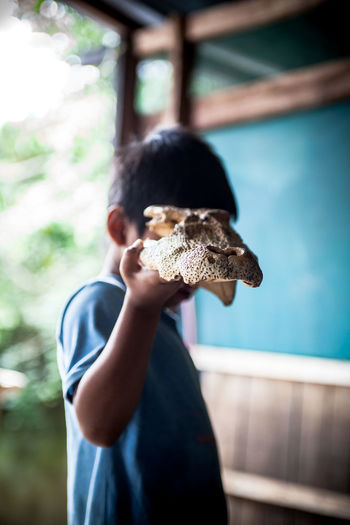 a boy holding a head bone of crocodile Bones Animal Themes Animals In The Wild Childhood Crocodile Day Focus On Foreground Headwear One Person People Real People Standing